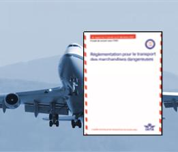 Visuel Formation IATA